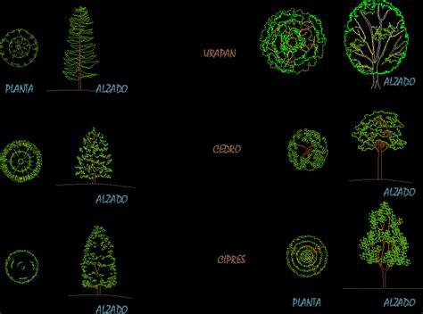Arbustos en alzado Archives   Planos de Casas   Planos de ...