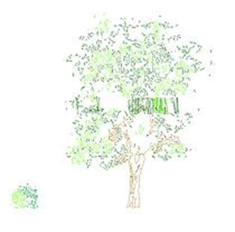 Arbustos en vista   CadBloques.com