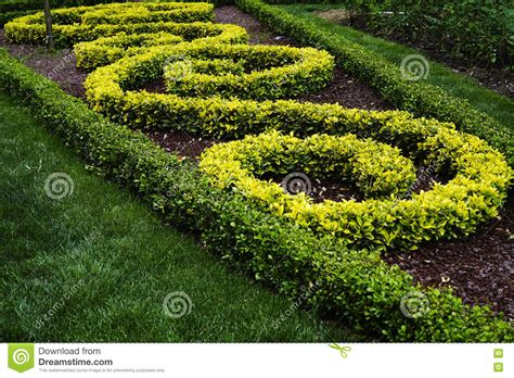 Arbustos Ornamentales En Un Parque Imagen de archivo ...