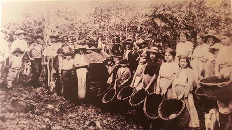 Archivo:Cogedores de café. Costa Rica.jpg - Wikipedia, la ...