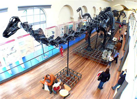 Archivo:Museo Nacional de Ciencias Naturales  Madrid  Sala ...