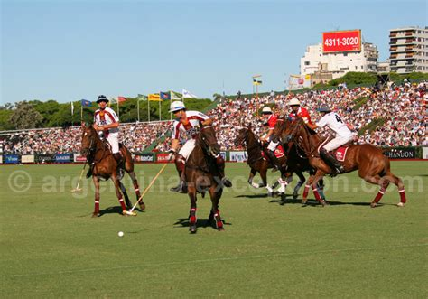 Argentine Polo Players: Argentina breaks records