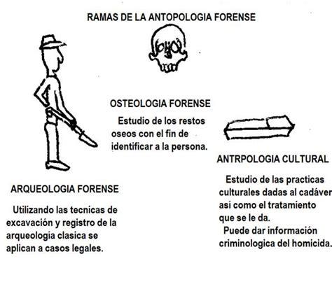Arqueología forense - Monografias.com