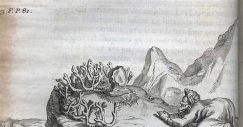 Arqueotoponimia: El arte parietal del paleolítico a través ...