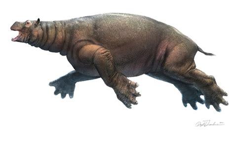 Art illustration   Prehistoric Mammals   Neoparadoxia ...