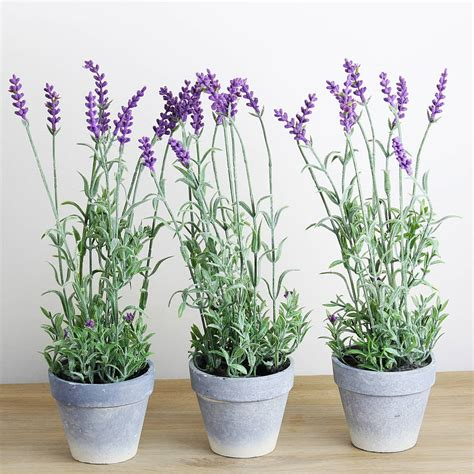 artificial lavender plant in pot by marquis & dawe ...