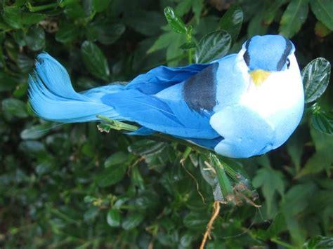 Artificial Tropical Bird   Turquoise & Blue Tones