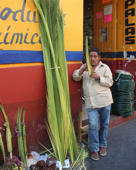 ASÍ LO FESTEJAMOS… DOMINGO DE RAMOS – Radio México ...