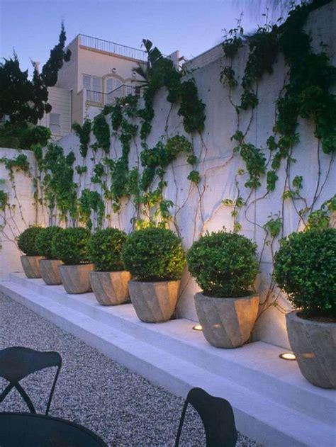 Astuces d'entretien jardin et aménagement paysager