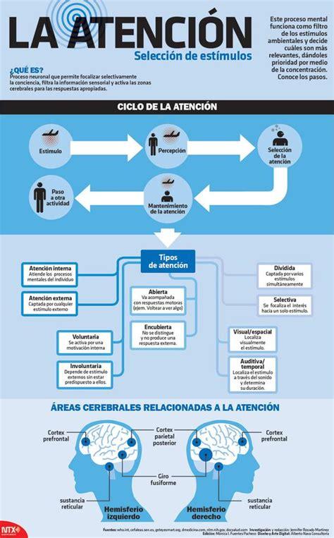 Atención: qué es y cómo funciona #infografia #infographic ...