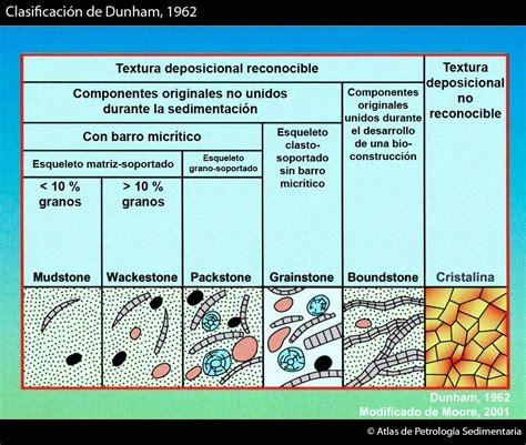Atlas de Petrología Sedimentaria - Rocas carbonáticas ...