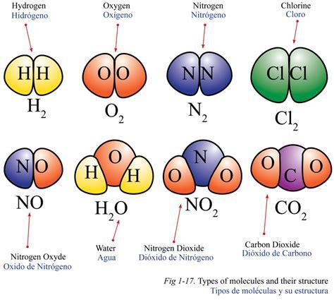 Átomos e Moléculas | Biologia: A ciência da vida