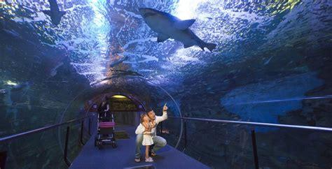 Auditorio Aquarium - San Sebastián Turismo