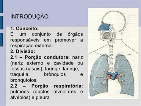 Aula sistema respiratório