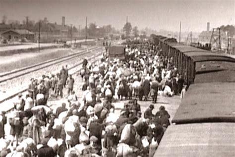 Auschwitz y los campos de concentración