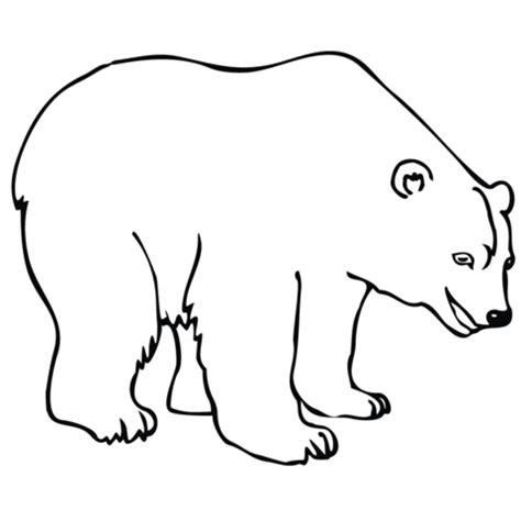 Ausmalbild: Eisbär | Ausmalbilder kostenlos zum ausdrucken