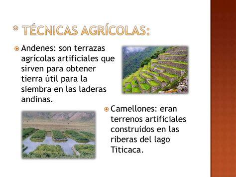 Avances tecnológicos de los Incas