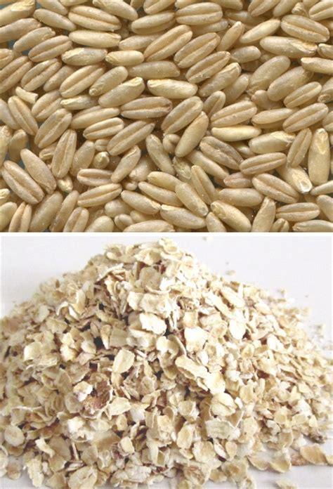 Avena, propiedades nutricionales y beneficios de su ...