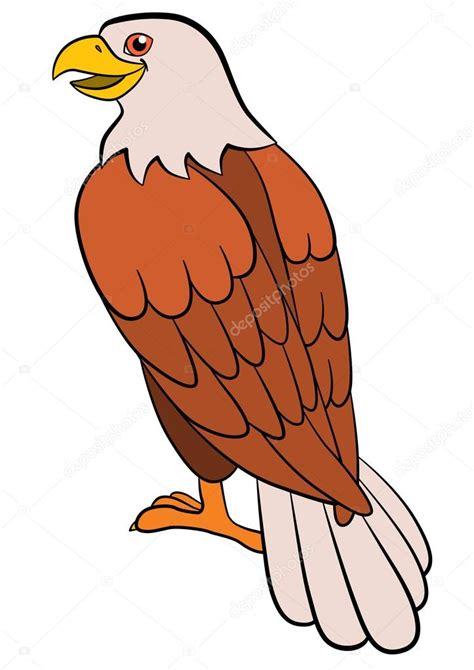 Aves de dibujos animados para niños: águila. Águila calva ...