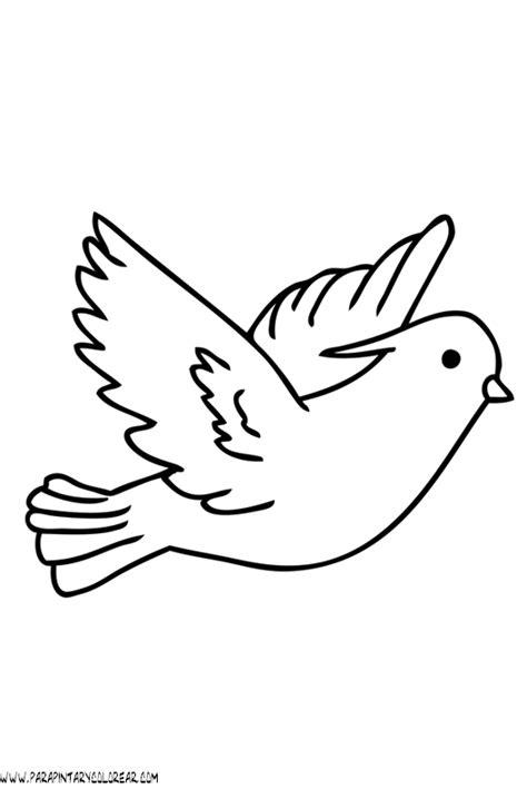 Aves dibujos   Imagui
