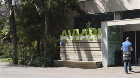Aviario   Zoo Barcelona