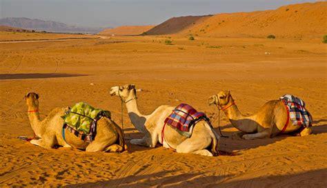 Avicii: Todo lo que debes saber sobre Omán, el país donde ...