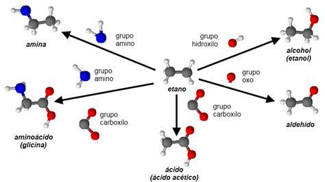 B.log.ia 2.0: Las biomoléculas orgánicas