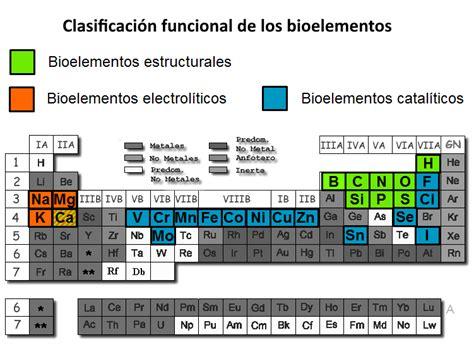 B.log.ia 2.0: Los niveles de organización subcelulares ...