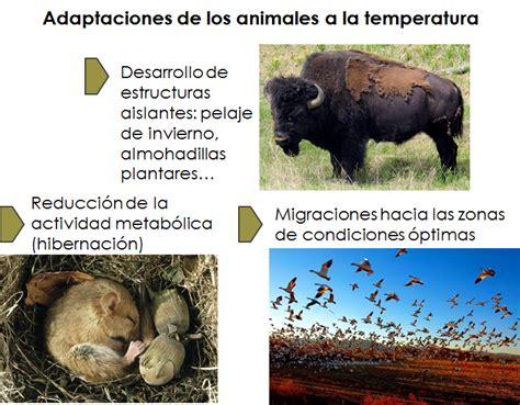 B.log.ia 2.0: Los seres vivos y las condiciones de su entorno