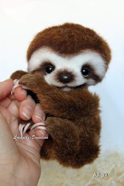 Baby Sloth | Baby animals | Pinterest | Animales, Animaux ...