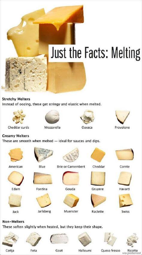 Back To Basics: 4 Types Of Homemade Cheese | Survivopedia