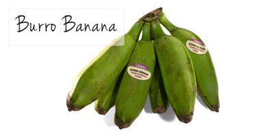 Banana, Burro - Calories, Nutrition Facts, Recipes