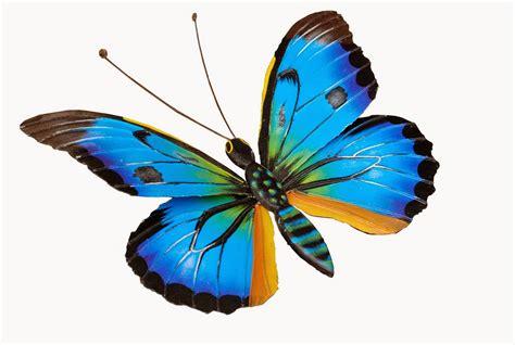 Banco de Imagenes y fotos gratis: Imagenes de Mariposas ...