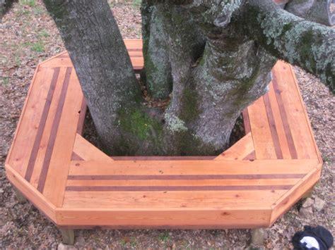 Bancos de exterior que rodean y protegen a los árboles