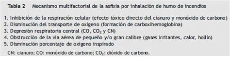 Bases del manejo clínico de la intoxicación por humo de ...