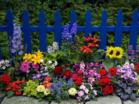 Beautiful Flower Garden Pictures, Photos, and Images for ...