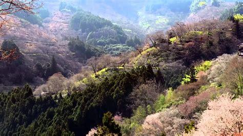 Beautiful Nature Spring 1080p HD - YouTube