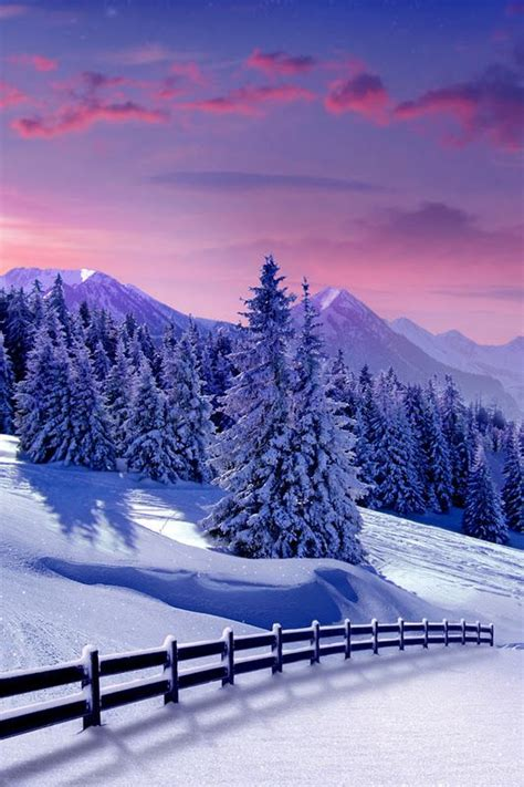Beautiful pictures — Wonderful nature in winter ...