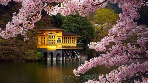 Beautiful Spring Desktop Backgrounds HD   2018 Cute ...