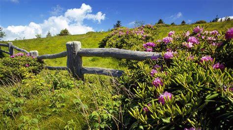 Beautiful Spring Landscape HD Desktop Background ...