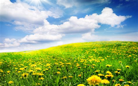 Beautiful Spring Landscapes Wallpapers | www.imgkid.com ...