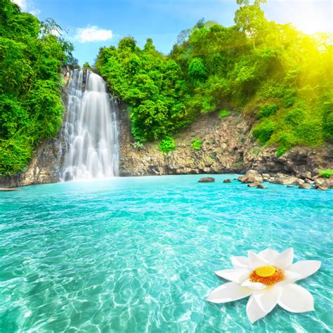 Beautiful Waterfall HD Wallpaper | Nature Wallpapers