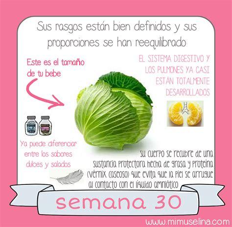 BebeBlog by mimuselina: Semana 30 embarazo. Tamaño y ...