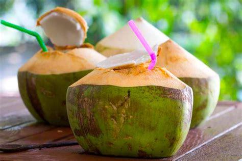 Benefícios da água de coco dependem se a marcação adequada ...