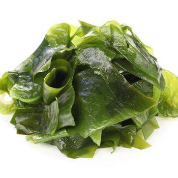 Beneficios de comer algas en el embarazo: fuentes ...