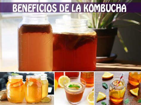 Beneficios de la kombucha y propiedades asombrosas para ...