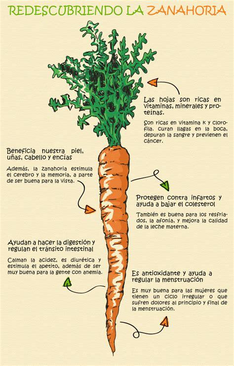 Beneficios de la zanahoria que no conocías