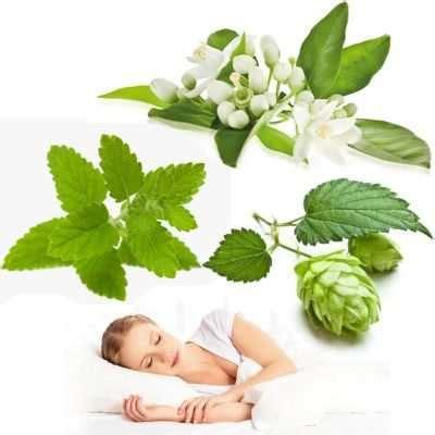 Beneficios de las flores de azahar, lúpulo y melisa para ...