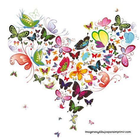 Best ideas about Butterfly Vector, Heart Butterfly and ...