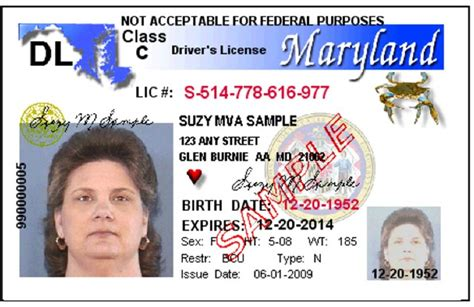 Bill to Give Illegal Immigrants Drivers Licenses Passes ...
